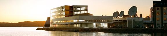 Viz Building